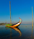 Moliceiro- typical boat — Stock Photo
