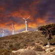 Wind turbines in movement — 图库照片 #6806498