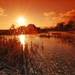 Stock Photo: Sunset in the country