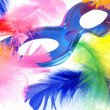 Feather carnival — Stock Photo #6807380