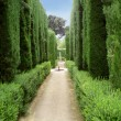 Stock Photo: Park in Alhambra