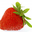 strawberry — Stock Photo #6808125