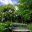 Garden and bench — Stock Photo