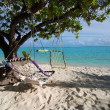 Stock Photo: Two hammocks and sea