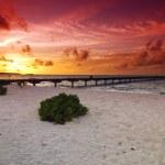 Sunset and jetty — Stock Photo #6808511