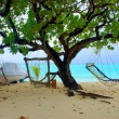 Two hammocks and sea — Stock Photo
