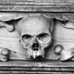 calavera tallada en piedra — Foto de Stock