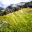 Alpine meadow and sun — Stock Photo