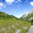 Alpine meadow and road — Stock Photo
