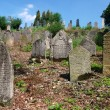 Ancient jewish cemetery — Foto de Stock