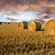 Straw rolls and dramatic sky — Stock Photo