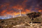 Wind turbines in movement — Stock Photo