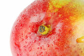 Mango detail — Stock Photo
