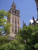 Zobrazit na zvonici — Stock fotografie