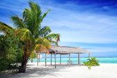 Beach in Maldives — Stock Photo