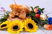 Teddy still-life — Stockfoto