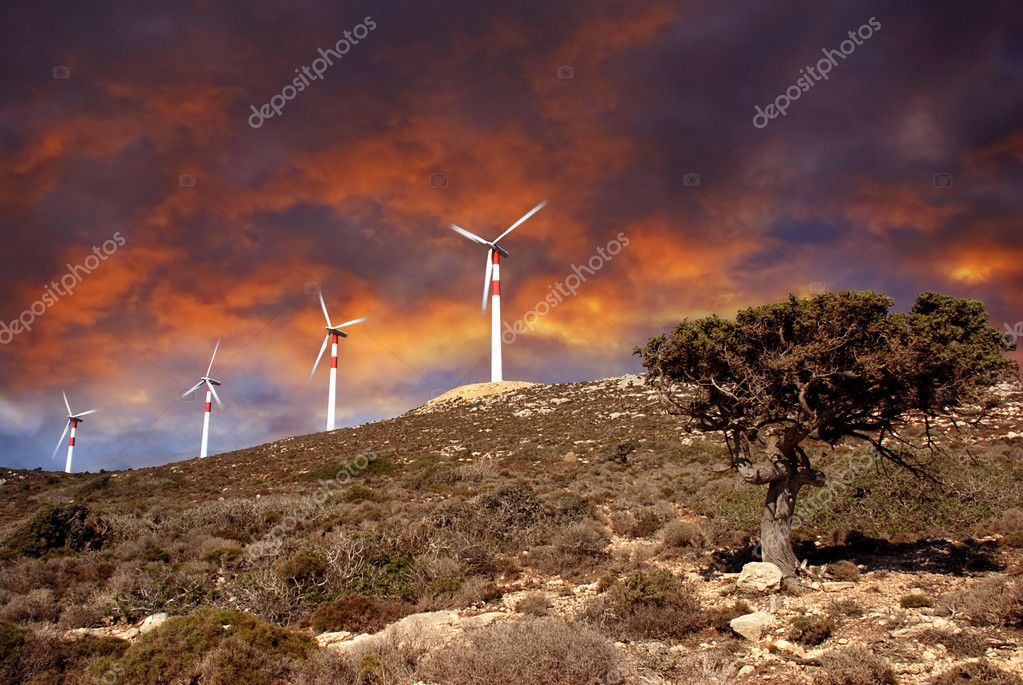 Wind turbines in movement, small tree at a beautiful dramatic sunset — Stock Photo #6806498