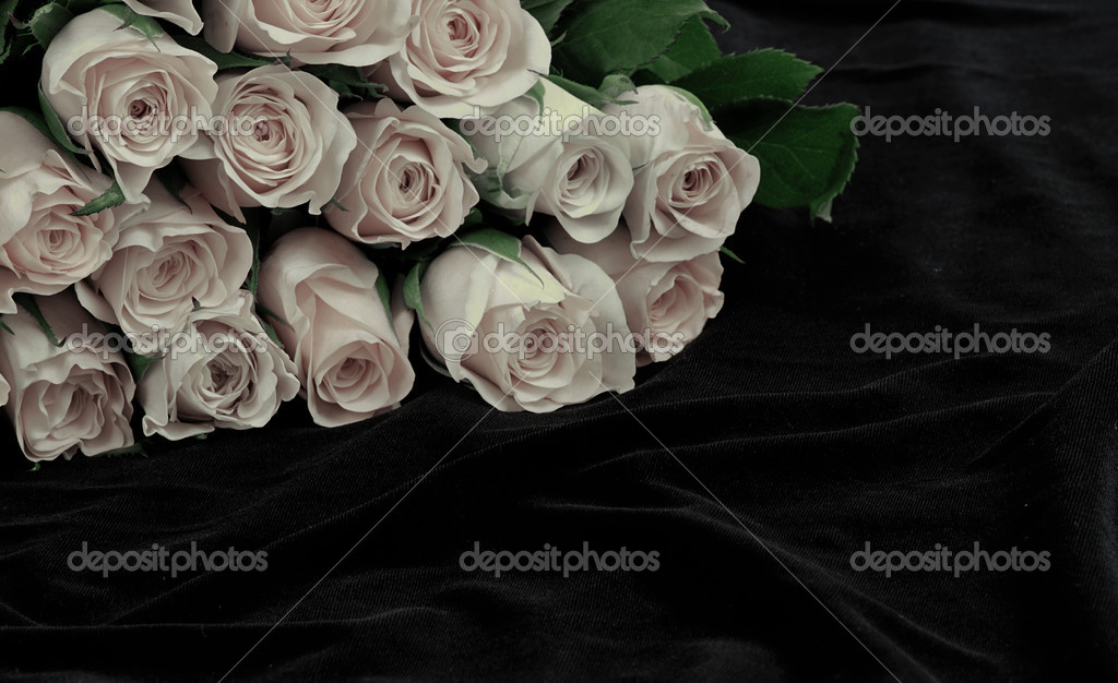 White rose blossoms lying on a black silk — Foto Stock #6806525