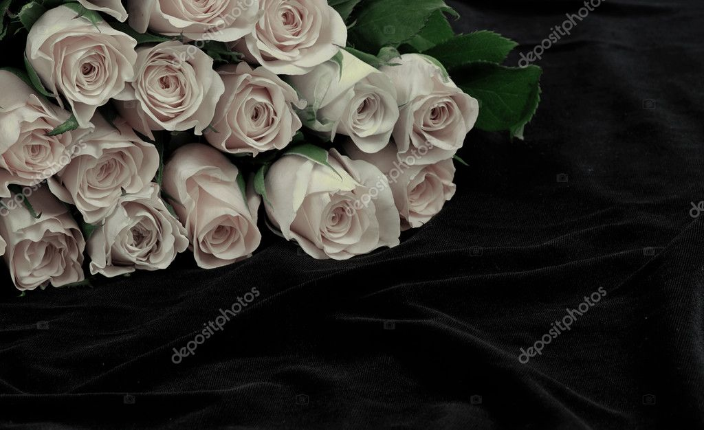 White rose blossoms lying on a black silk — Lizenzfreies Foto #6806525