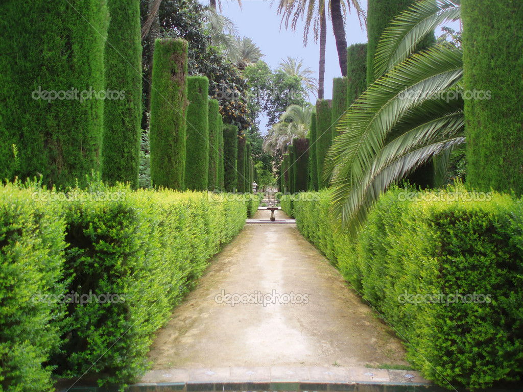 Pathway in the famous gardens of Alhambra       — Stock Photo #6807834