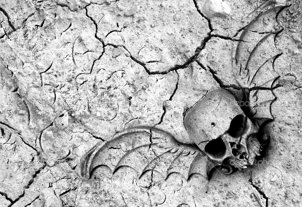 Drought means death in many parts of the world. Winged skull and cracked ground in black and white — Stock Photo #6808868