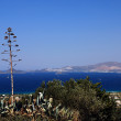 Greece and agave — Stock Photo