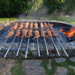Suckling pig on grill — Stock Photo #6810391