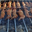 Suckling pig on a grill — Stock Photo