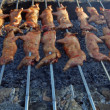 Suckling pig on a grill — Stock Photo #6810393