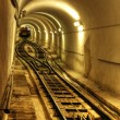 Tunnel with train — Stock Photo #6810923