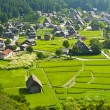 Ogimachi village — Stock Photo