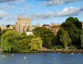 Windsor castle — Stock fotografie