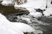 Forest winter brook — Stock Photo