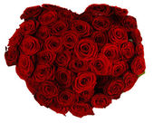 Rose heart — Stock Photo