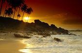 Pôr do sol em sri lanka — Foto Stock
