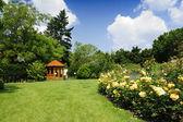 Trädgård med rosor och lavendel — Stockfoto