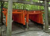 Fushimi Inari — Stock Photo
