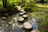 Stone zen path — Stock Photo