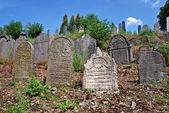 Ancient jewish cemetery — Stock Photo