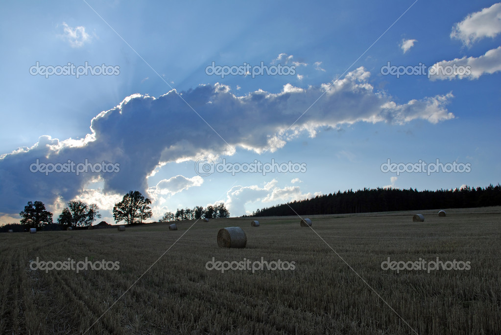 Field with straw rolls and dramatic sky — Stock Photo #6810126