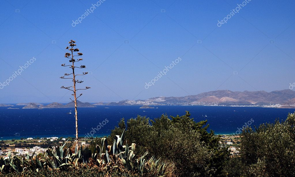 Greek islands, sea and agave americana  — Stock Photo #6810200