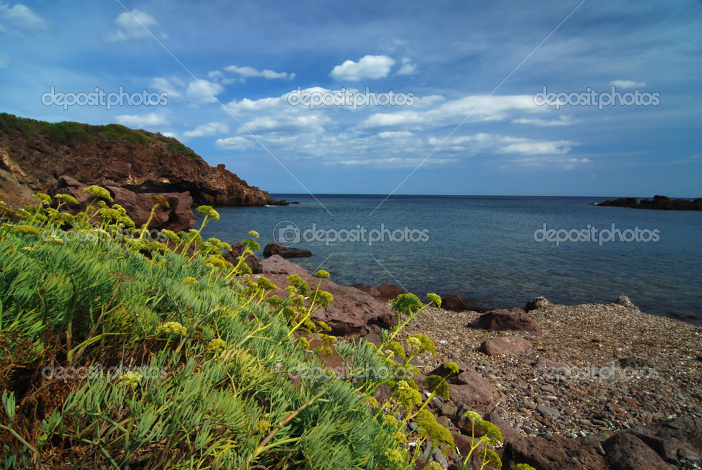 Rocky bay with beach and yellow flowers in the foreground  Stock Photo #6810218