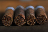 Cigars — Stockfoto
