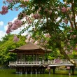 Gazebo in Nara — Stock Photo