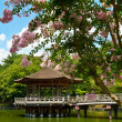 Gazebo in Nara - Stock Photo