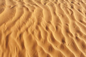 Detail of desert dune — Stock Photo