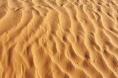Detail of desert dune — Stock Photo