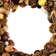 Dry fruit frame — Stock Photo