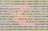 Binary code and red words — Foto Stock