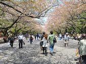 Tokyo Ueno Park in spring — Stock Photo